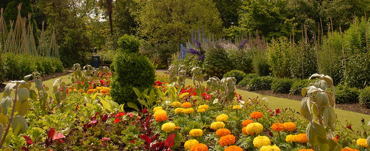Botanics in Bloom