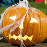 4 fangtastic ways to enjoy Halloween
